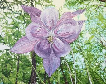 Oil Painting, Prints & Cards ~ Beneath the Columbine