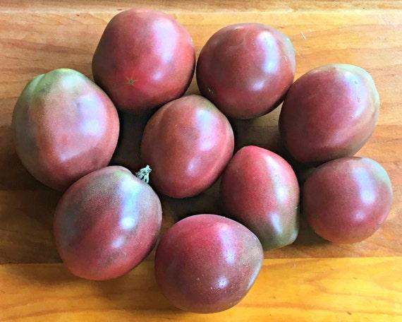 Graines de tomate héritage, cultivés biologique, sans OGM