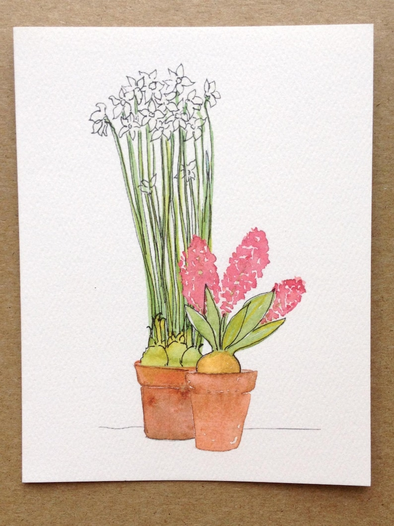 Paper Whites and Hyacinth Holiday Card