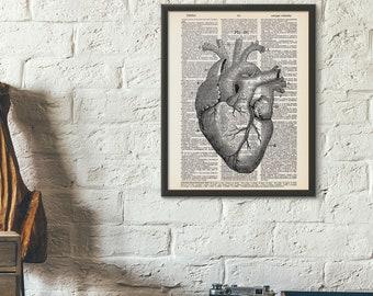 Heart Anatomy Dictionary Print Vintage Illustration Art Human Heart Wall Art Vintage Home Decor Anatomy Medical Print Anatomy Print