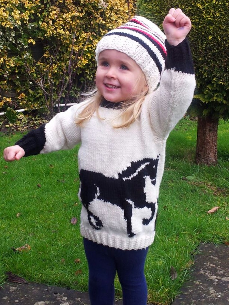 29ceda471 Horse Child s Sweater and Hat Aran Knitting Pattern