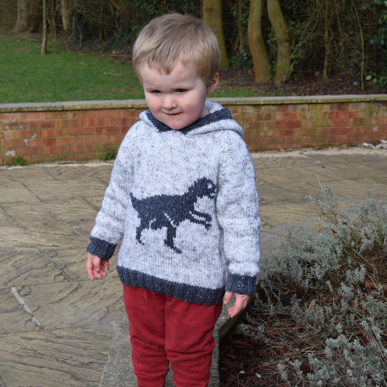 Knitting pattern for boys and girls dinosaur hoodie, Pdf download ...