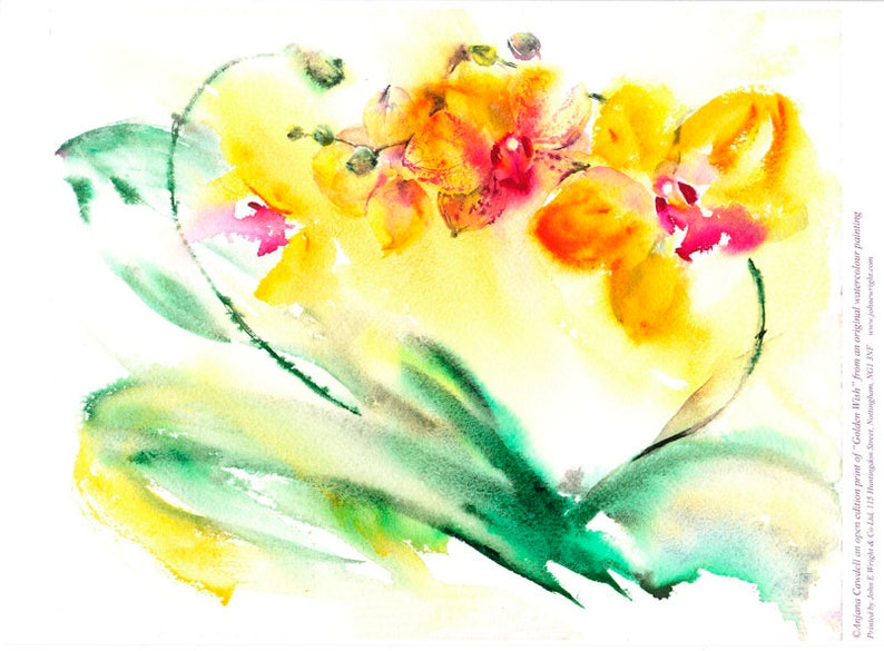 Orchid Painting Giclee Print Watercolour orchid floral image 0