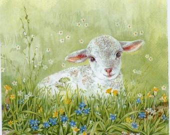 meadow sheep 4 Single paper decoupage napkins Cute Baby lambs spring -774