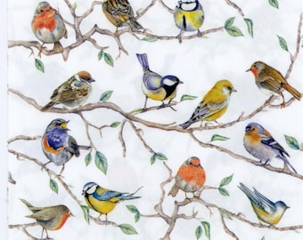 Vintage Woven Lunch Dinner Napkins Birds Guatemala Central South America Cotton