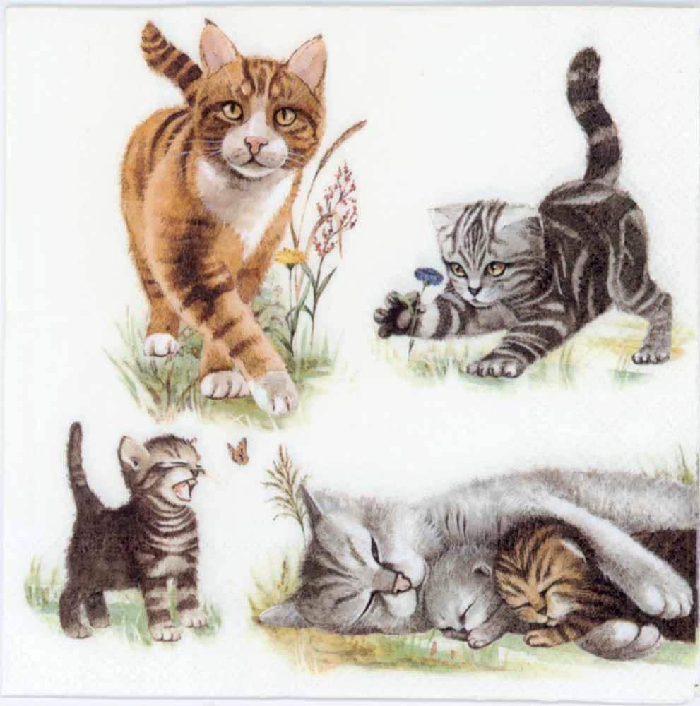Decoupage Napkins Cat Family Cat Napkins Cats Kitten Etsy