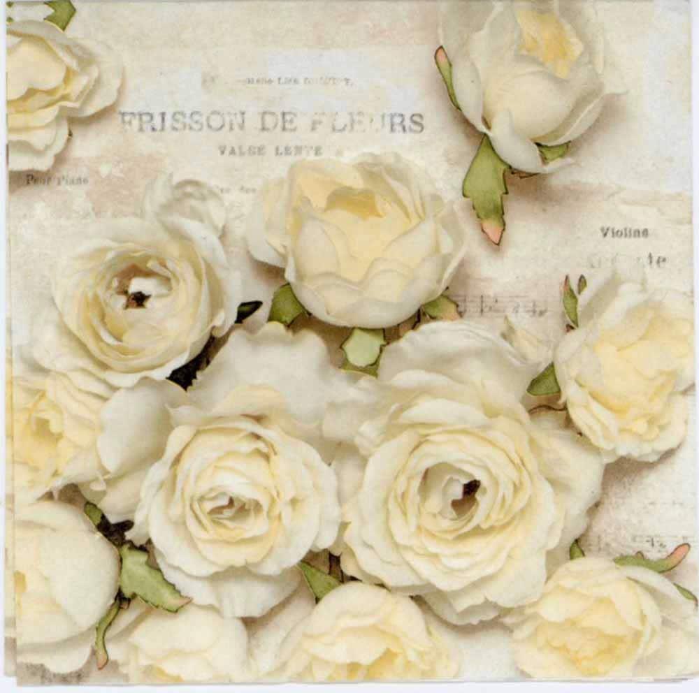 Decoupage Paper Napkins White Roses Of Frisson Rose Napkins Etsy
