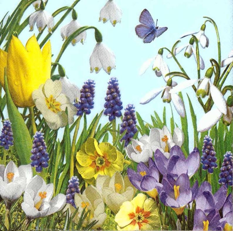 De Serviettes Floral Table Tulipes Sauvages 4 Papillons DécoupageJardin Fleurs 8nk0wXNOP
