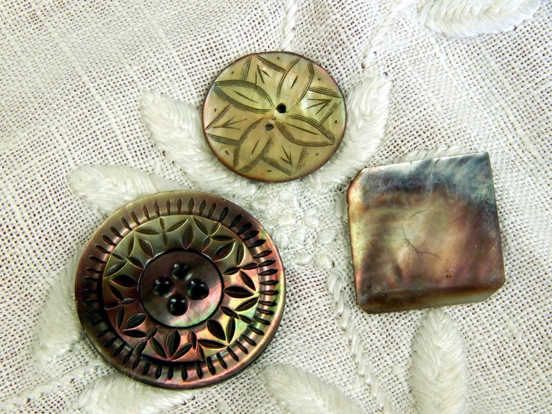 Shell Buttons Carved 3 Three Smokey Collector Buttons Vintage Iridescent Largest 38mm
