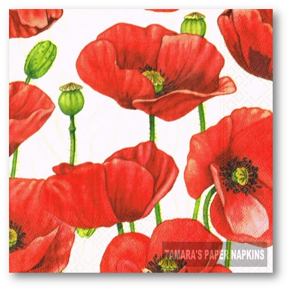 flowers design -365 poppies 4 Single paper decoupage napkins Poppy