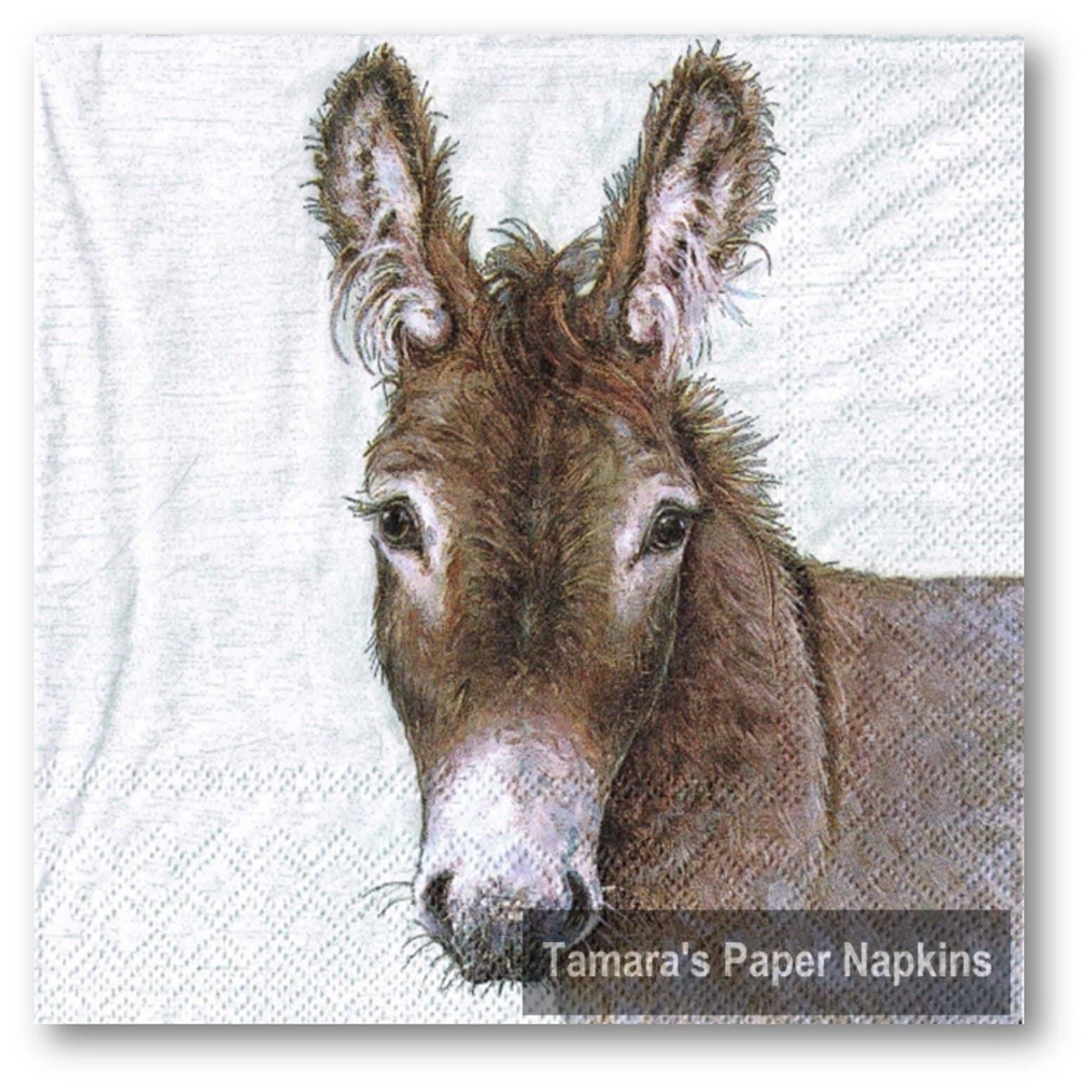 4 Decoupage Napkins Young Donkey 13 Lunch Napkins Etsy