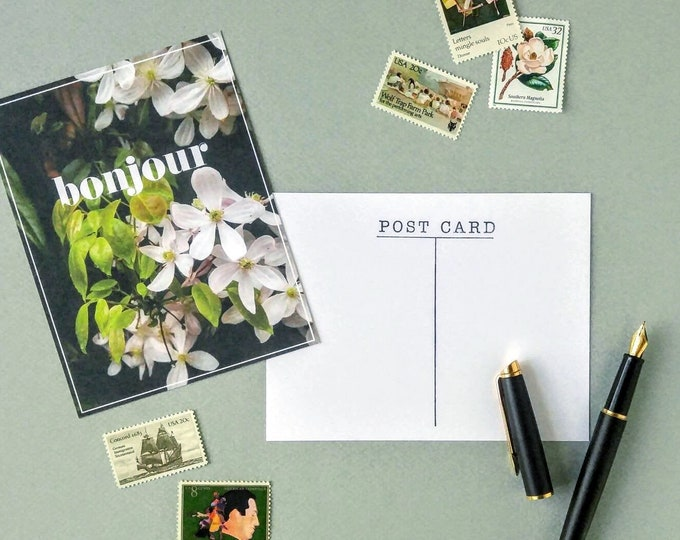Bonjour Floral Postcard - Matte Paper Clematis French Stationery