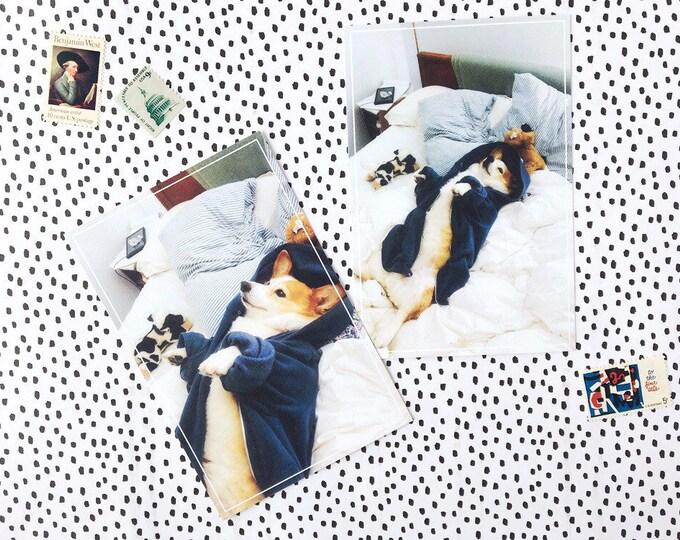 Corgi Postcard Set - Good Boy Lounging in Bed