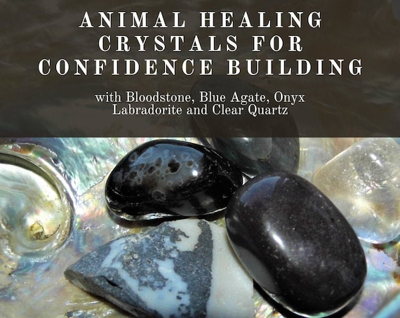 Crystals for Confidence, Animal Confidence Building, Crystals for Confidence in Animals, Crystals Therapy