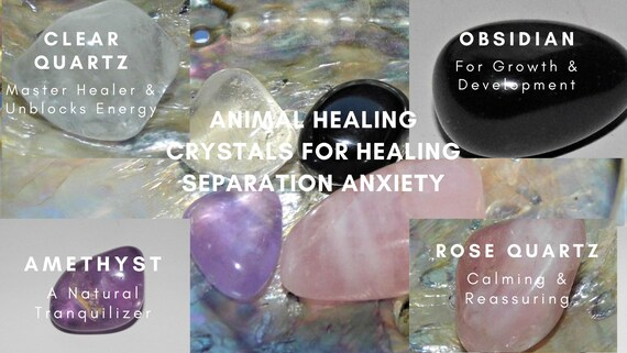 Crystals for Separation Anxiety, Animal Healing Crystals,  Animal Therapy  Crystals