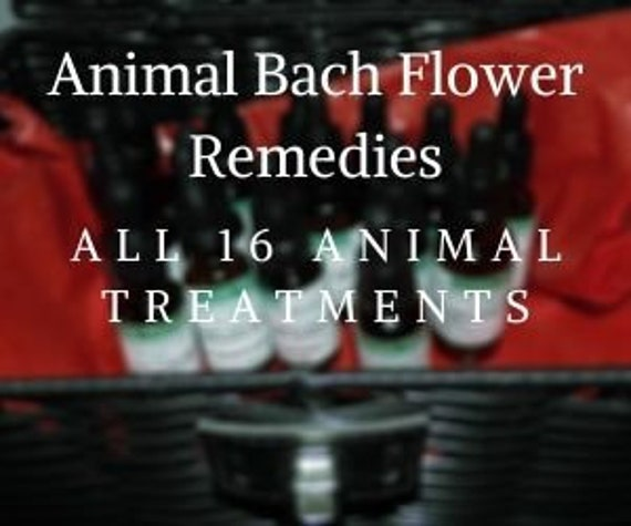 16 Animal Bach Flower Remedies,   Bach Original Flower Remedies, Bach Flower Essences