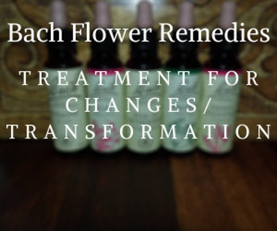 Bach Flower Remedy for Changes/Transformation