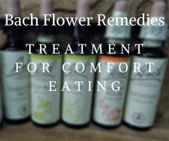 Bach Flower Remedies for  Comfort Eating, Bach Original Flower Remedies, Bach Flower Essences