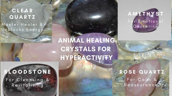 Animal Crystals for Hyperactivity, Animal Healing, Crystals for Hyperactive Animals, Crystals Therapy