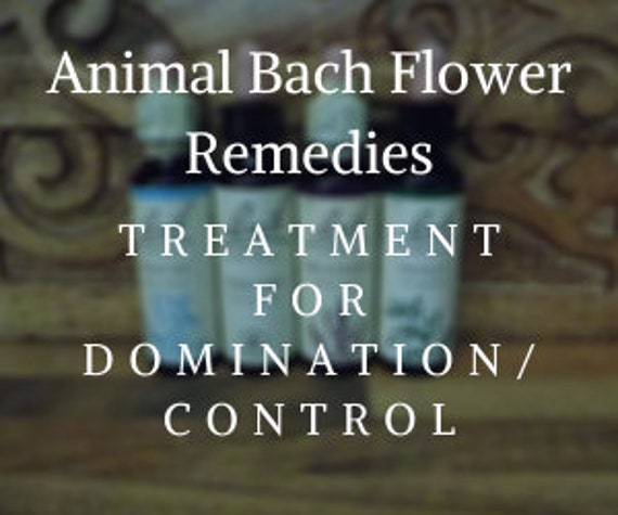 Animal Bach Flower Remedy for  Domination/Control Issues