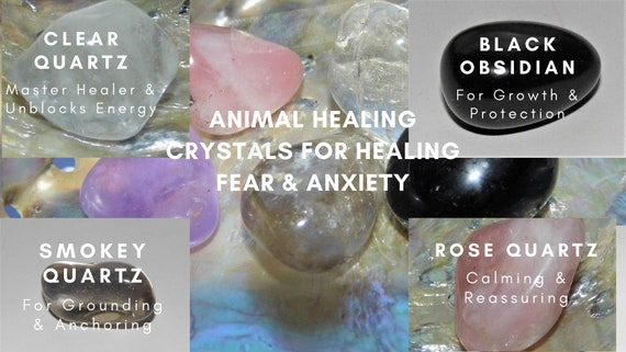 Animal Healing Fear/Anxiety, Animal Therapy Crystals, Crystals for Healing Animals Fear & Anxiety