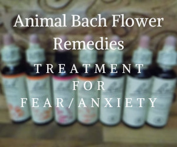 Animal Bach Flower Remedies for Treating Fear/Anxiety