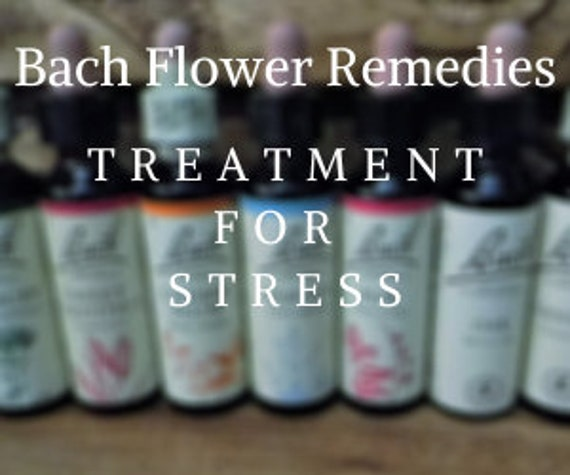 Bach Flower Remedies for  Stress, Bach Original Flower Remedies, Bach Flower Essences