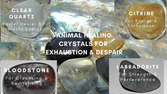 Crystal Healing Exhaustion Despair, Animal Healing Exhaustion & Despair, Crystal Therapy for Animals, Crystals Therapy