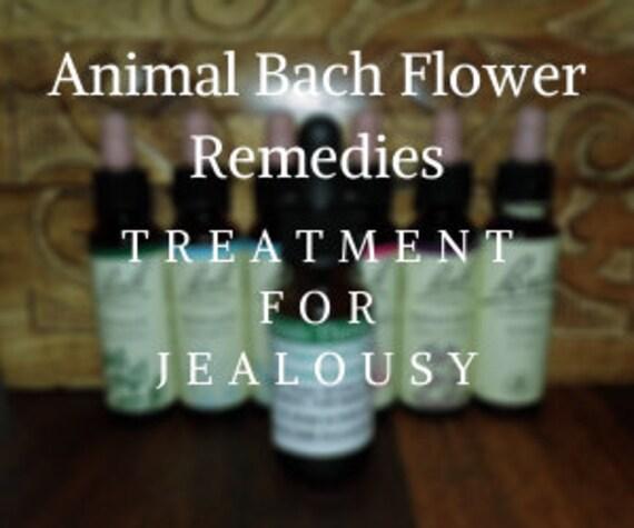Animal Bach Flower Remedy for  Jealousy, Bach Original Flower Remedies, Bach Flower Essences