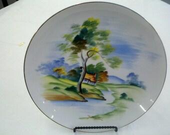 Hand Painted Y Mizutani Decorative Plate