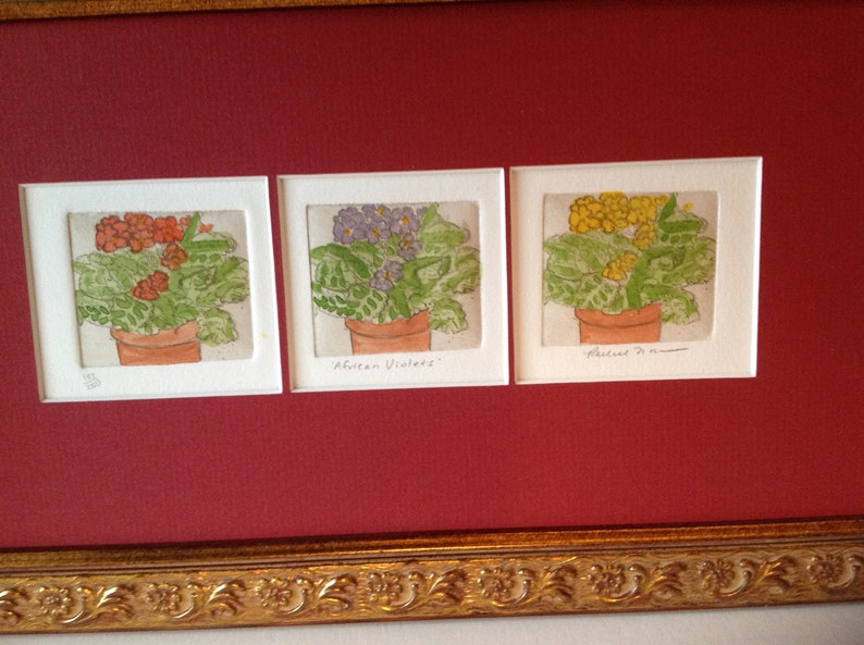 Original Etching of African Violets by Rachel Isaac