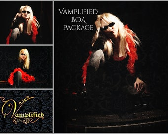 Vamplified VIP package signed CD and postcards hard rock heavy metal goth glam band records  singer guitars microphone  bass drums