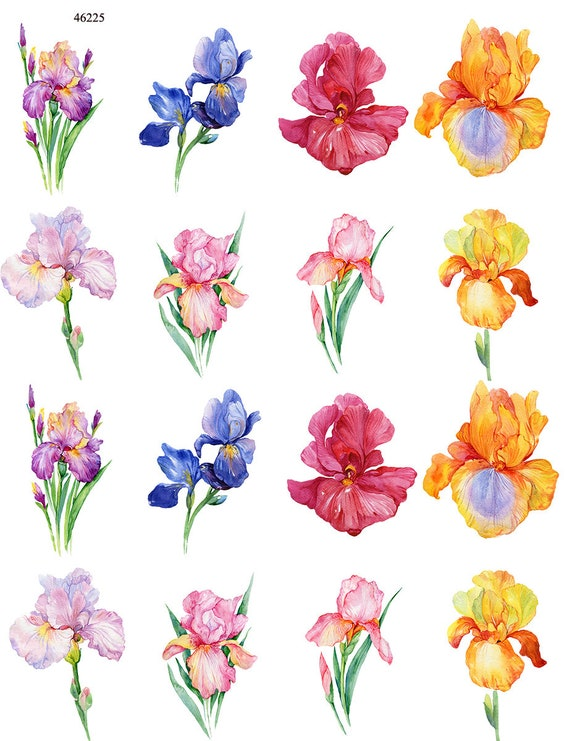 Iris Flowers Ceramic Decals Enamel Decal Fusible Decal Etsy
