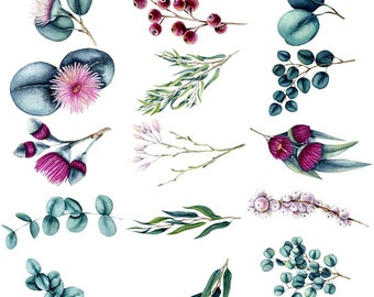 Watercolor Eucalyptus - Ceramic Decals- Enamel Decal - Fusible Decal - Glass Fusing Decal ~ Waterslide Decal - 56311