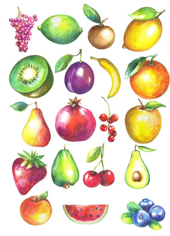 Aquarelle de Fruits - céramique émail Stickers autocollant - sticker thermocollant - verre Fusing sticker ~ toboggan Decal - 46122