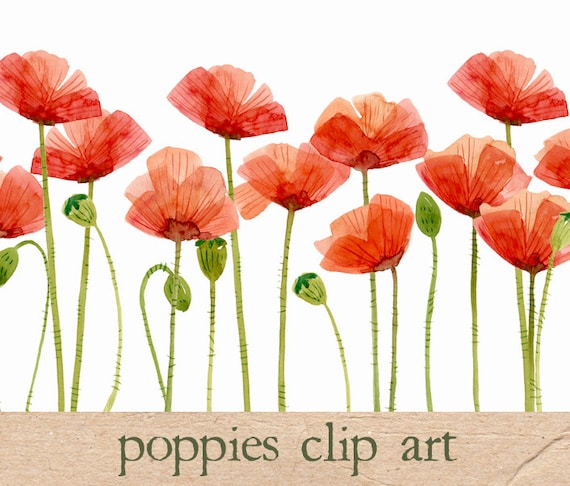 Digital clipart watercolor poppies flower clipart etsy image 0 mightylinksfo