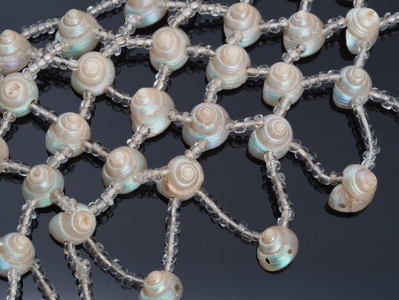 Victorian shell necklace, Trochus Shell bib neckla
