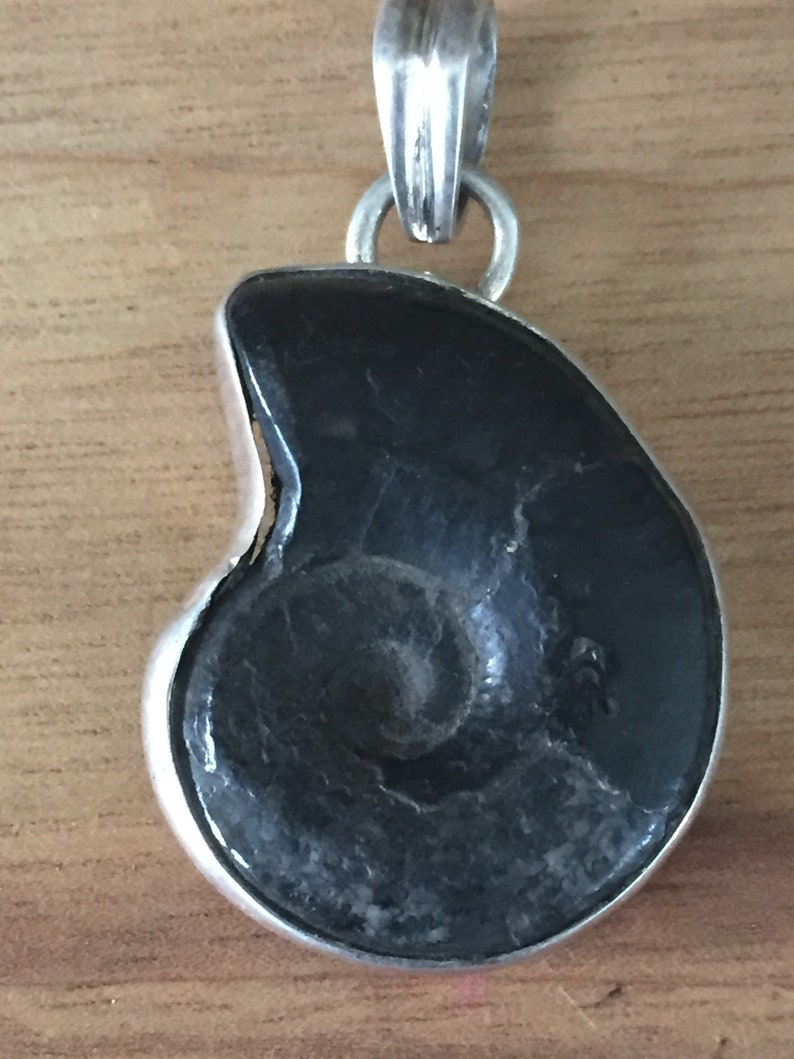Sterling Silver Fossil Ammonite Black Pendant