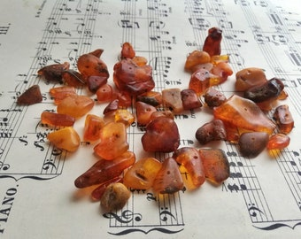Natural Baltic Amber genuine lamber yellow egg yolk amber beads with drill hole lot of 50 40g1.4oz