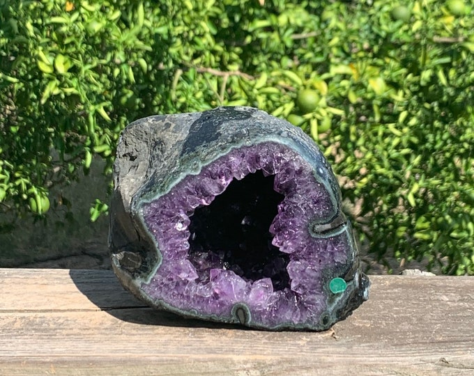 2.8 lb Amethyst Geode with deep cavity --Artigas Uruguay