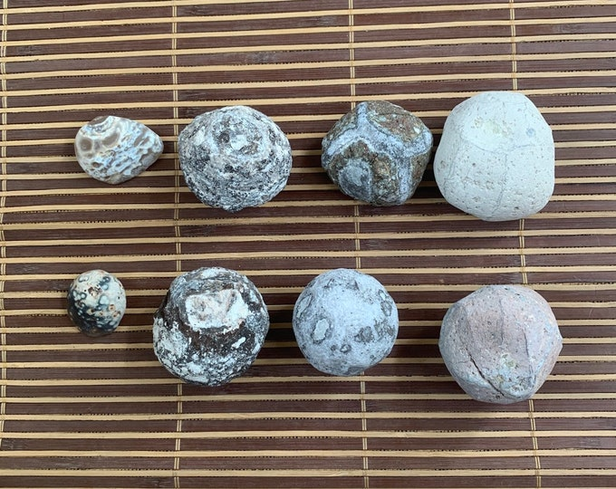 Lot of 8 break you own geodes