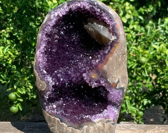 """10.1 lbs, 8.8"""" LARGE Grade AAA Cut base display Amethyst formation /specimen with Calcite inbedded in the geode --Artigas Uruguay"""
