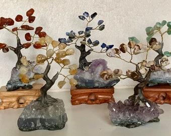 Bonsai Gem Tree