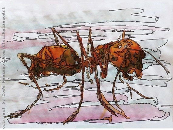 Brown lilac water-color ant: A3 print of water-color painting in limited edition of 5, original art