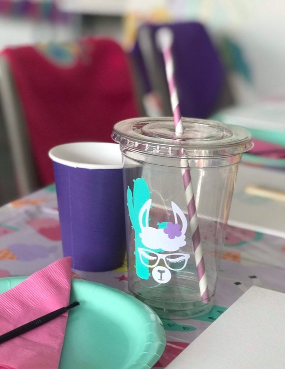 Custom Party Cups Birthday Llama Cactus Fiesta Plastic Reusable Kit
