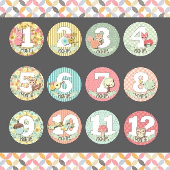 Monthly Baby Girl Stickers,Tie Monthly Onesie Stickers,Peel Off Stickers,Photo Stickers,Body Suit Stickers,Baby Shower