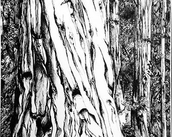TREES: Hand pulled, small batch screen prints