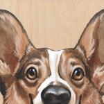 Snoot - 8x8, corgi, dog, bust, nose, ears, snoot, welsh corgi, charity