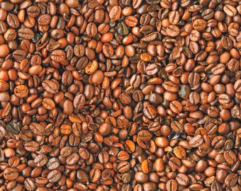COFFEE BEANS Bean Cafe Cotton Fabric - Curtain Upholstery Craft Material - 110''/ 280 cm Extra wide - BROWN