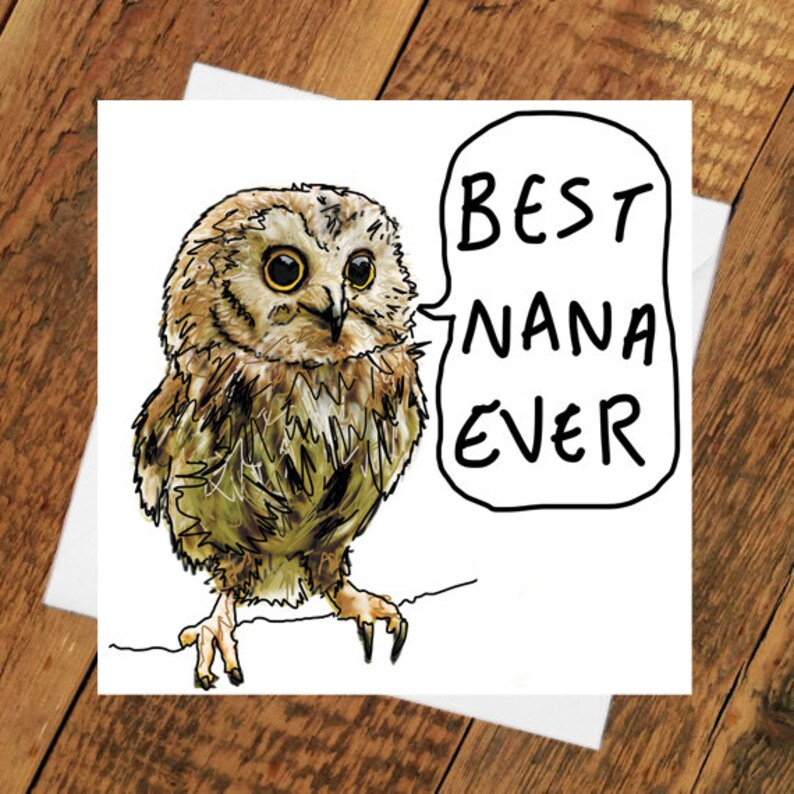 Nana Owl Card Birthday Mother's Day Funny grandma image 0